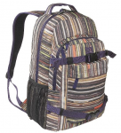 DC Enroll Skateboard Backpack