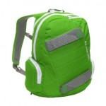 Dakine Axis Green Skateboard Backpack
