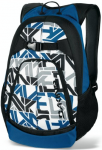 Dakine Pivot Skateboard Backpack